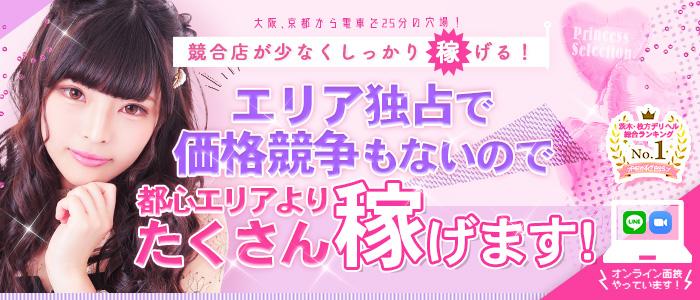プリンセスセレクション茨木・枚方店の求人画像
