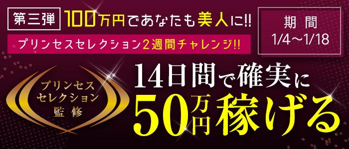 プリンセスセレクション姫路の求人画像