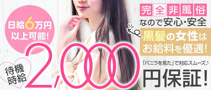 purethera(ぴゅあセラ)の体験入店求人画像