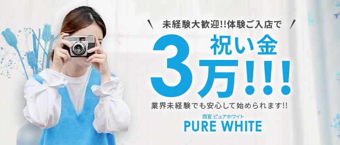 PURE WHITEの未経験求人画像