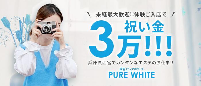 PURE WHITEの体験入店求人画像