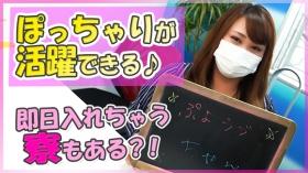 ぷよラブのスタッフによるお仕事紹介動画