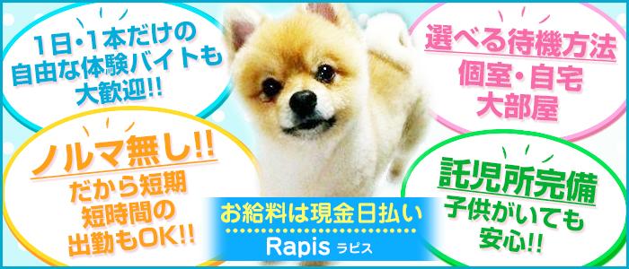 未経験・Rapis~ラピス~