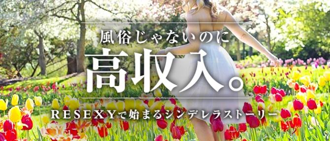 RESEXY~リゼクシー~のぽっちゃり求人画像