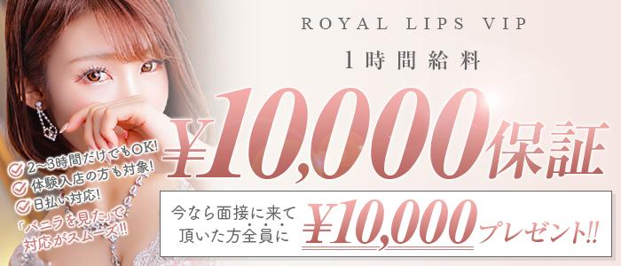 Royal LIPS VIP(ロイヤルリップスビップ)の求人画像