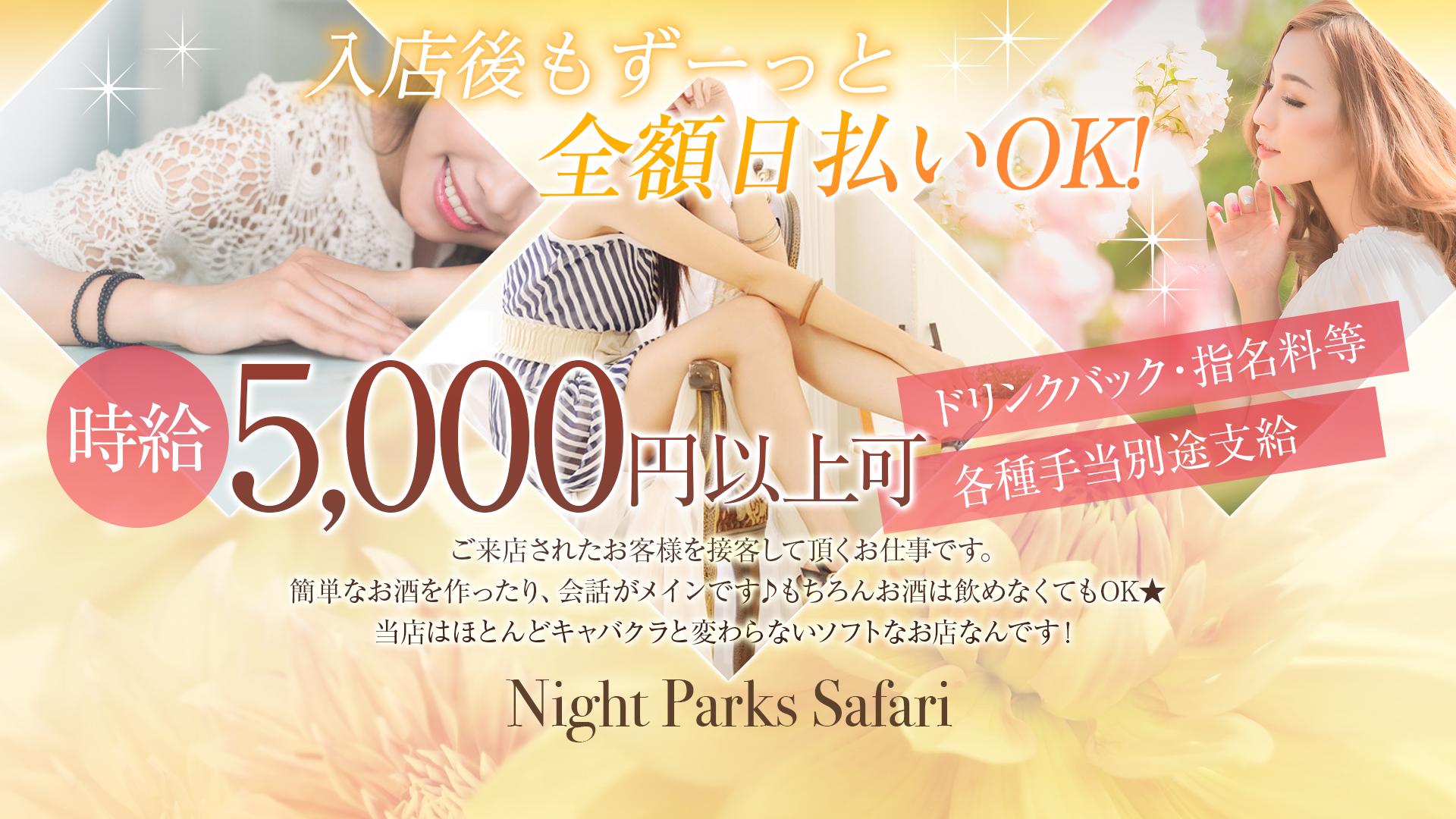 Night Parks Safari