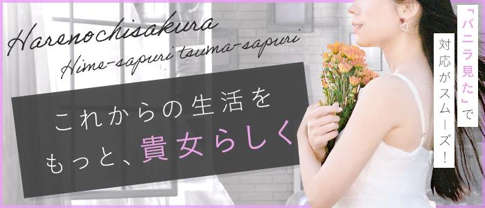 晴れのちさくら 姫サプリ・妻サプリの求人画像