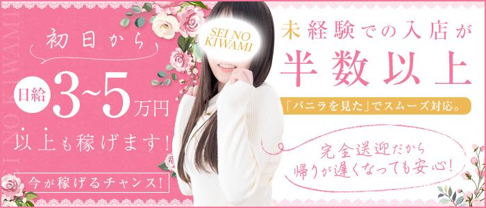 SEINOKIWAMIの体験入店求人画像