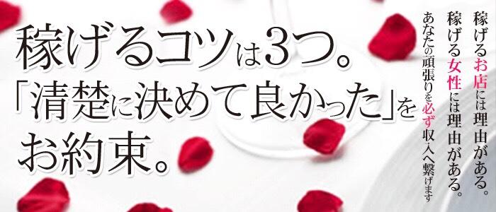 清楚~seiso~の人妻・熟女求人画像