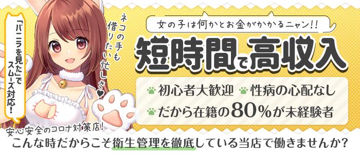 仙台手こき専門店 ネコの手の求人画像