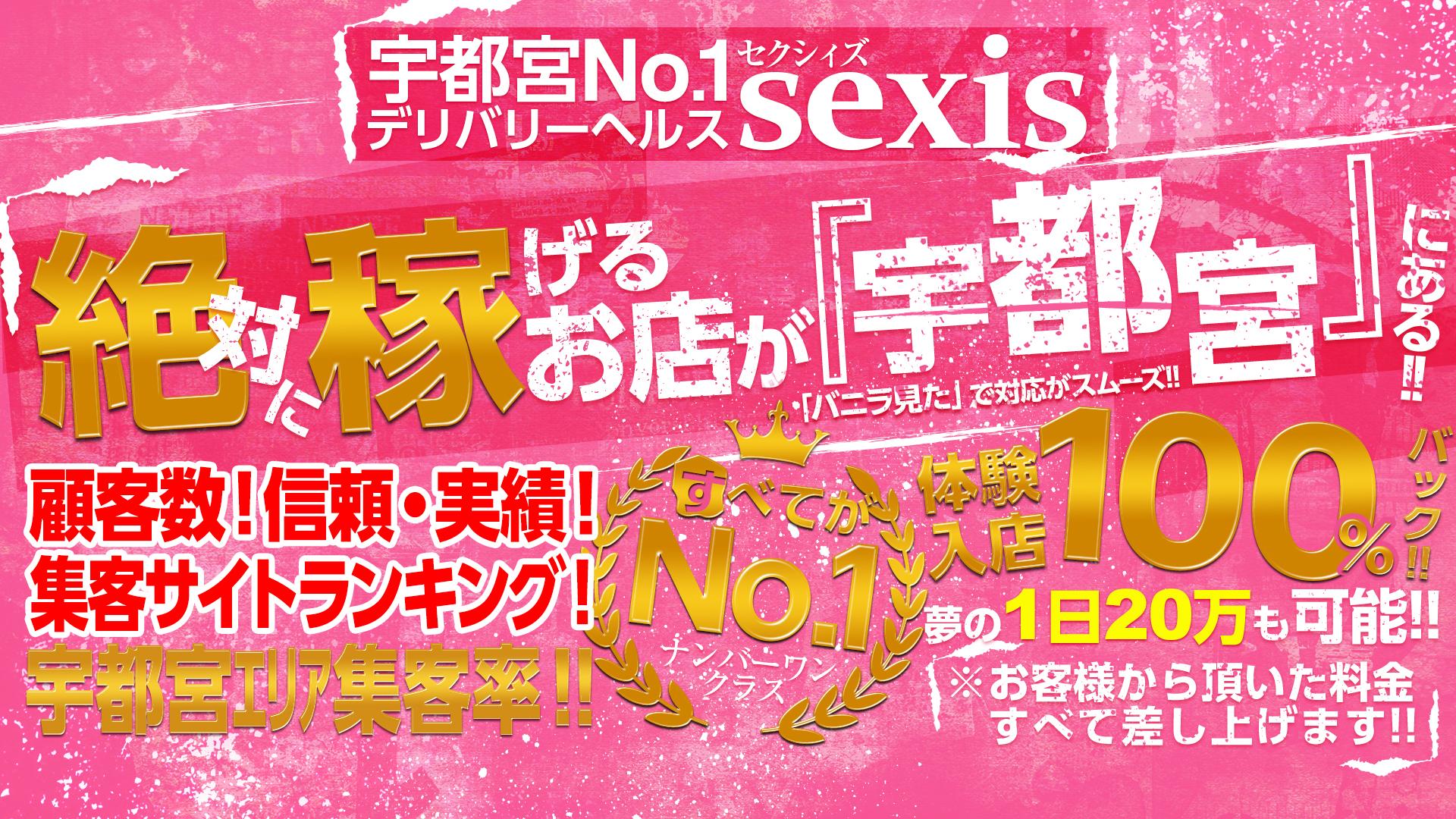 sexisの求人画像