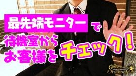 シャブール渋谷のバニキシャ(スタッフ)動画