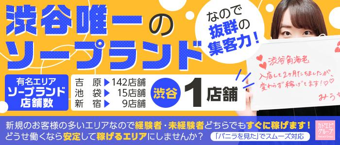 角海老グループ 渋谷エリアの求人画像