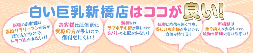 白い巨乳 新橋店(秋コスグループ)の求人画像