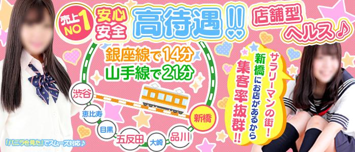 新橋平成女学園の求人画像