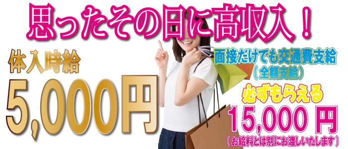 体験入店・新宿ピンキー