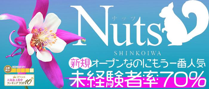Nuts~ナッツ~の未経験求人画像