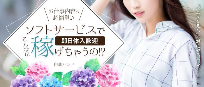 体験入店・白恋ハンド