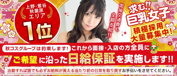 白い巨乳(秋コスグループ)の体験入店求人画像