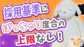 白いぽっちゃりさん 五反田店の求人動画
