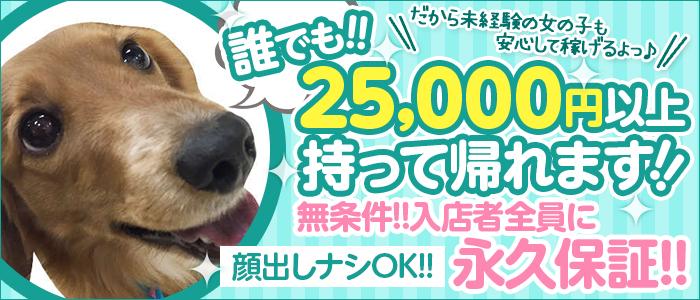 未経験・LIPS札幌