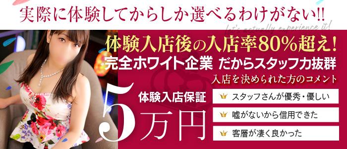 smile(スマイル) 豊橋店の体験入店求人画像