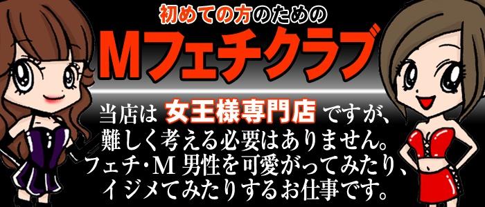 新宿Mヤプーの求人画像