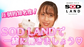 SOD LANDの求人動画