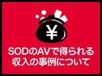 ソフト・オン・デマンド (株)で働くメリット1