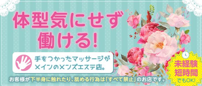 札幌パラダイス天国(札幌ハレ系)の求人情報