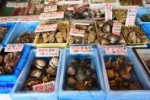 北海道各地から食材が!!