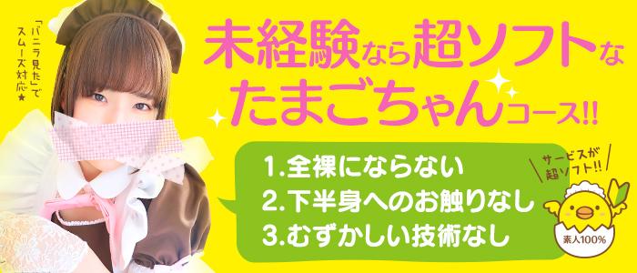 未経験・メイドin札幌(札幌ハレ系)