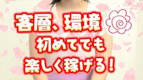 シャンプー娘。 (埼玉ハレ系)の求人動画