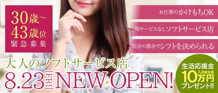 体験入店・素敵な奥様(札幌ハレ系)