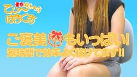 T-BACKS てぃ~ばっくす錦糸町店の求人動画