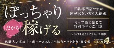ダンシングおっぱいTEAM爆(仙台)の求人情報