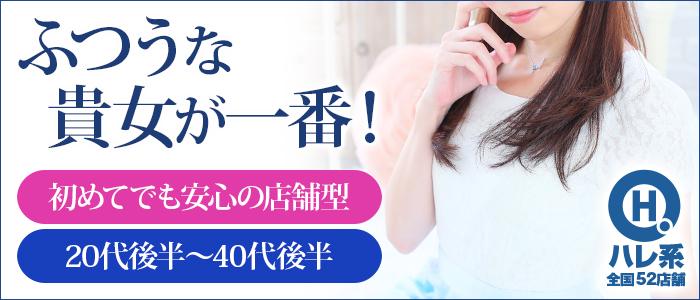 セレブショップ新宿(東京ハレ系)の人妻・熟女求人画像