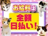 キティーズテラス 立川店