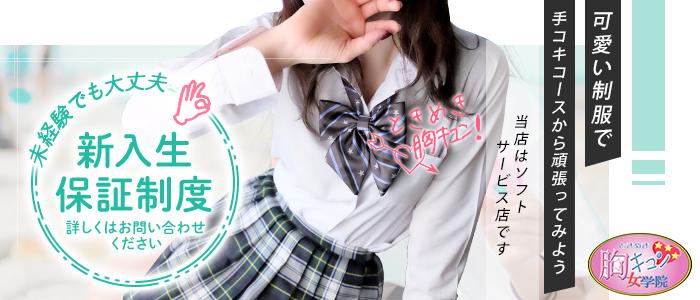 ときめき胸キュン女学院の体験入店求人画像