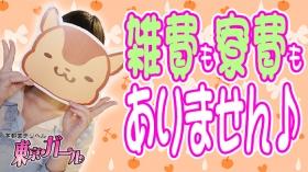 宇都宮デリヘル 東京ガールの求人動画