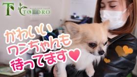 TOTORO~トトロ~