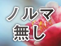 姉系若妻専門~Tsubaki~で働くメリット4