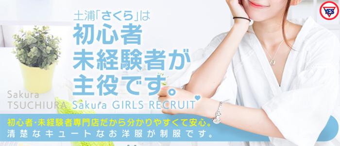 未経験・Sakura YESグループ