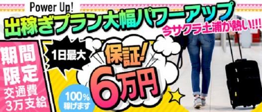 Sakura YESグループ