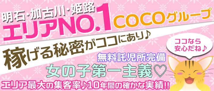 未経験・COCO GROUP