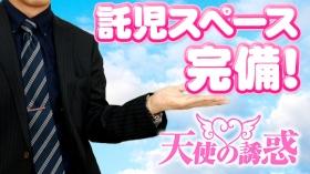 天使の誘惑の求人動画