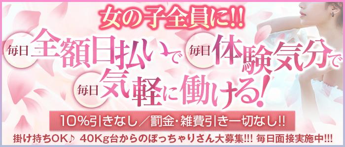 大阪ツーショットキャバクラ和の求人画像