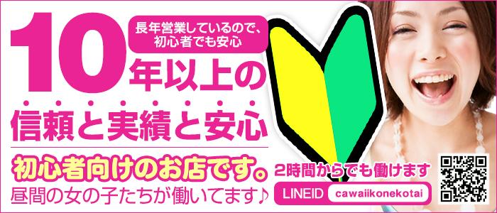 未経験・Cawaii Konekotai~かわいい子猫隊~