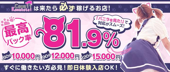 Cawaii Konekotai~かわいい子猫隊~の体験入店求人画像