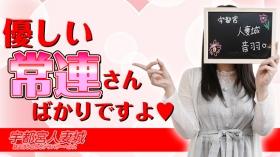 宇都宮人妻城の求人動画